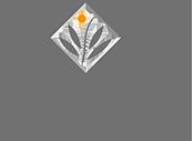 ENVIRON エンビロン・オフィシャルパートナー